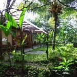 mi bungalow en medio de la selva