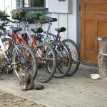 Bikes outside for use