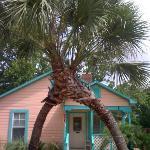 Entrance to Tiki Palms B&B