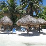 Omni Beach area