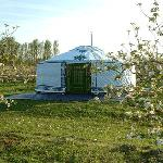 This is one of our luxury  yurts