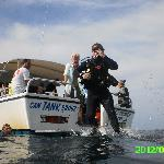 Gulf of Mexico Dive