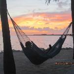 In the hammock watching the sunrise