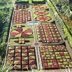 Provided By: Botanical Gardens Madeira