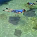 Stingray Bay Snorkel