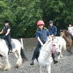 Explore Lee Valley on horseback
