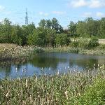 Discover our nature reserves