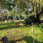 There's Pub Gardens... and there's ours! :-)