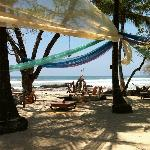 Beachfront social hammock area