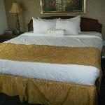 "Beds & pillows were VERY comfortable. Card under bed read ""yes, we clean under here, too."""