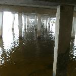 Boardwalk under 41