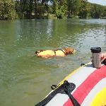 Ahhhh,cool water!!!