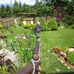 sunny fron yard