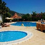 Beautiful clean pool