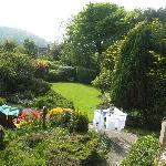 View of garden from room 7