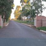 The driveway leading to the Cellar Door
