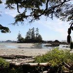 Flores Island--hike