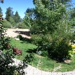 View from the porch of Cabin 15