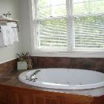 Cabin Room Bathtub!