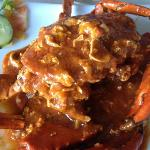 Kepiting Merah (Red Crab)