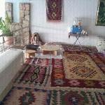 Turkse kamer hoyel