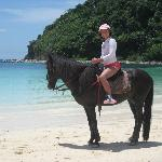 My daughter enjoyed riding Black Beauty: she was rather wild!