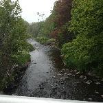 Rennie's River, from the Elizabeth Avenue bridge