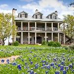 Romantic Hill Country Bed and Breakfast