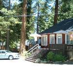 Moose Hollow/Bear's Den Cabin