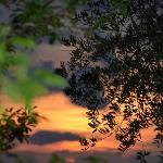 Sunset from Logge di Silvignano