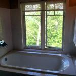 Large bathroom tub with view