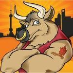 City Bull
