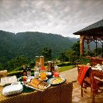 Silverback Lodge new ownership