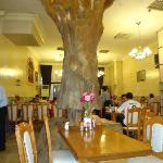 The Tree in the Restaurant