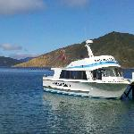 Delivering the mail in Pelorus Sound