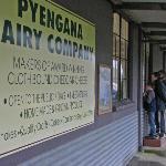 Pyengana Dairy