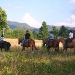Horse Trail in Lake Placid