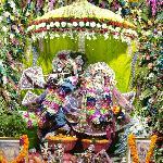 Amazing darshana