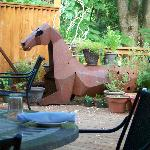 Horse on the deck