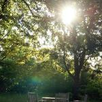 Sitzgruppe im romantischen Garten bei Abendsonne