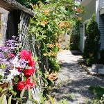 Summer is in full bloom at Le Cachet