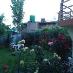The beautiful garden early in the morning