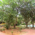 the grounds are well maintained