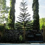 Example of architectural gardening, as seen from in front of the pool and our room