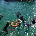 Snorkelling at Moreton Wrecks with Tangatours