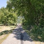 Pretty path!
