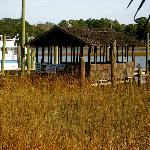 close up of the dock