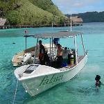 Falaya dive boat