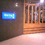 Photo of Blue Frog (Kerry Parkside)