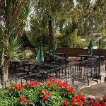 Our beer garden